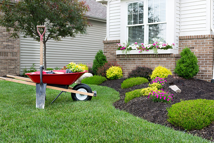 landscaping companies louisville ky